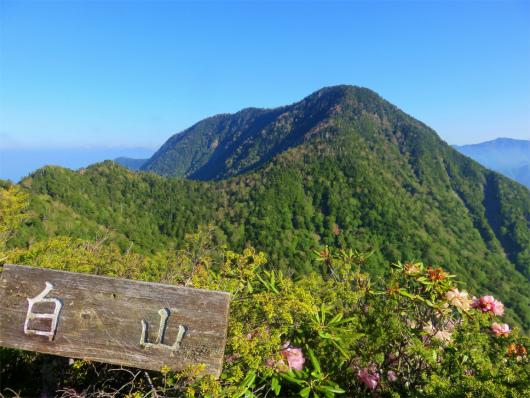 白山からの皇海山の景色