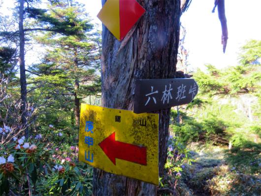庚申山と六林班峠への分岐