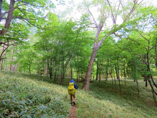 庚申山荘地味に登り坂