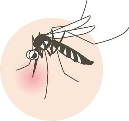 蚊に刺された患部