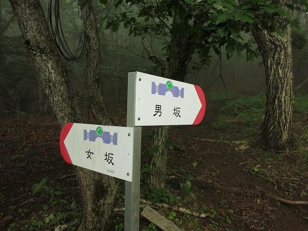 滝子山男坂・女坂