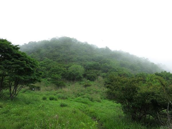 ハマイバ丸景色