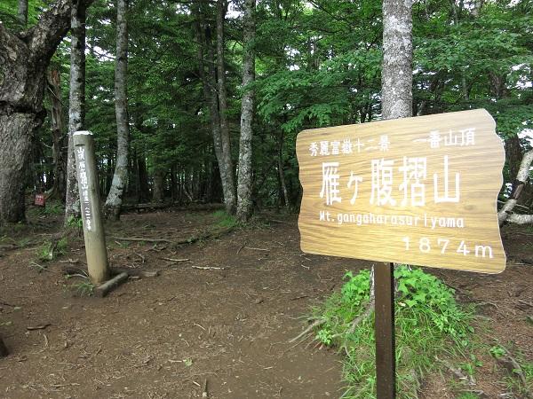 雁ヶ腹摺山の山頂