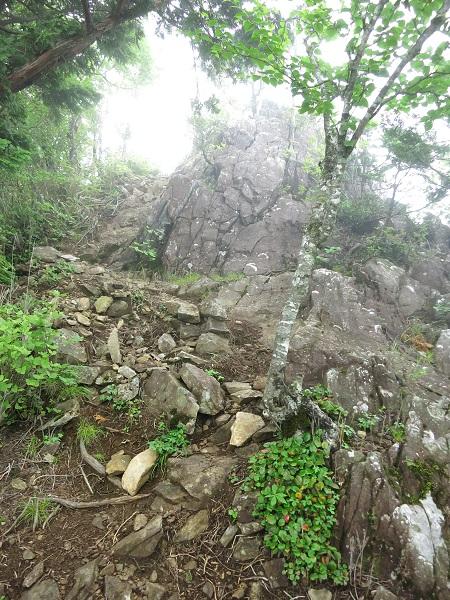 姥子山岩場