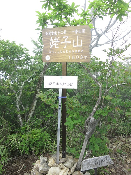姥子山(西峰)山頂