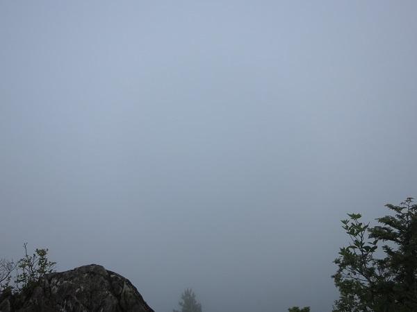 姥子山西峰の景色