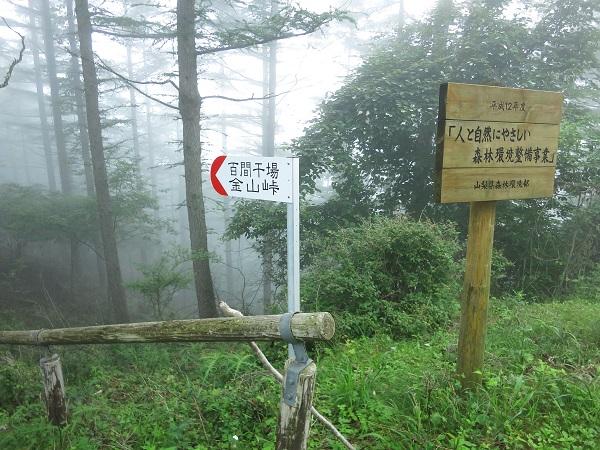 姥子山金山峠ルート