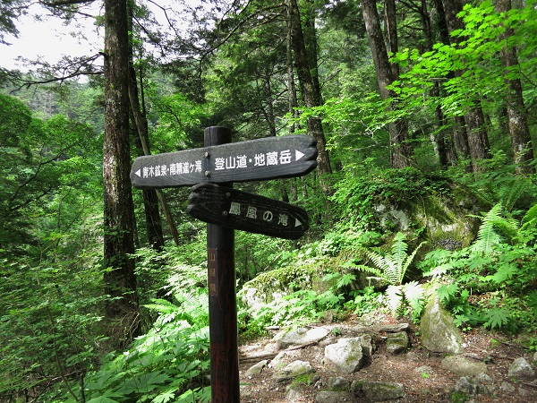 鳳凰滝への分岐