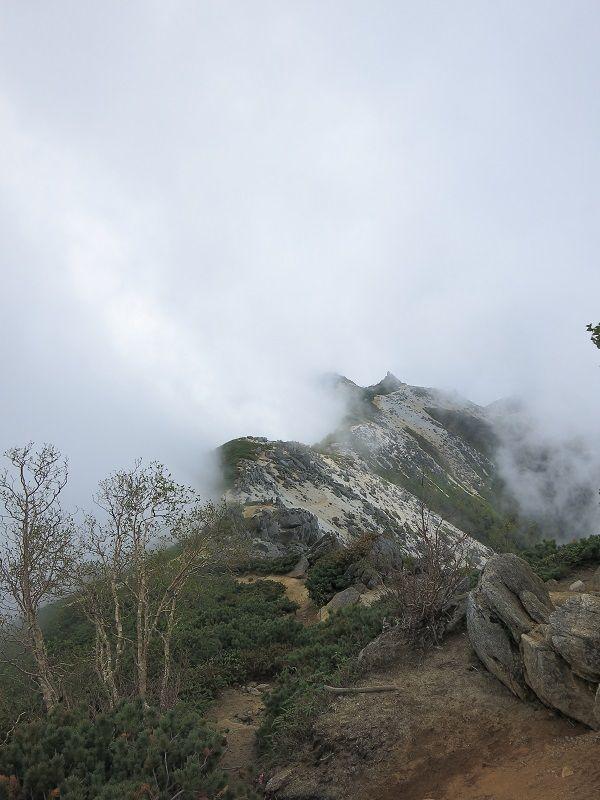 薬師岳への稜線