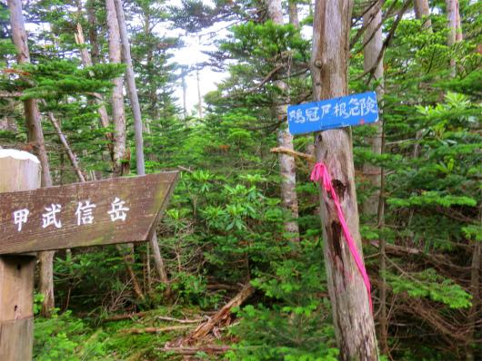 鶏冠山(鶏冠尾根)の入口