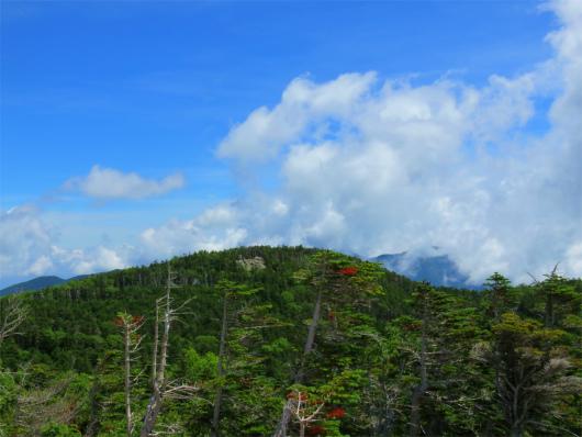 国師ヶ岳景色