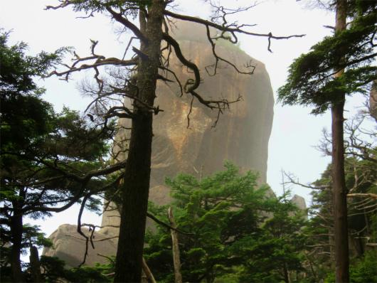 大やすり岩が立派