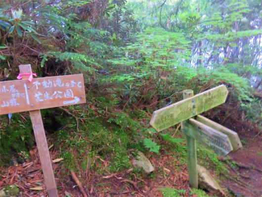 瑞牆山と不動滝との分岐