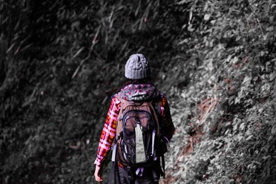 登山道と登山者