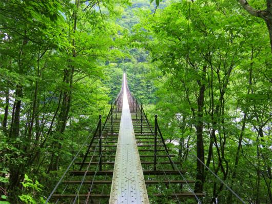 畑薙大吊橋n