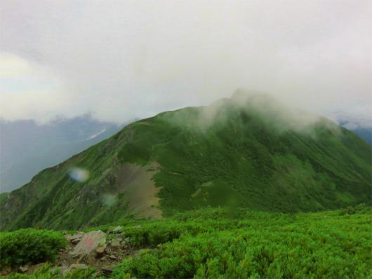 正面に見えている山は大沢岳(標高2819m)