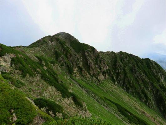 振り返っての小赤石岳