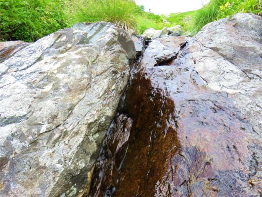 水量も豊富水場