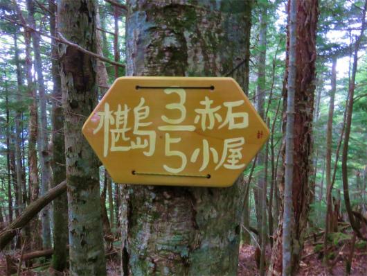 椹島ロッジまで3/5