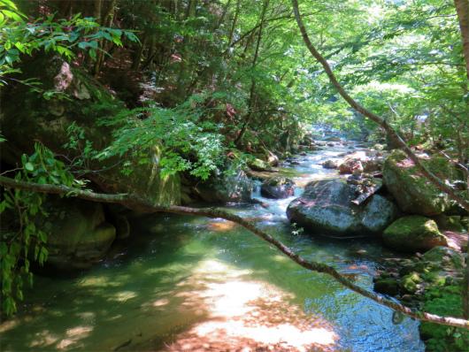 増冨の湯周辺の渓谷