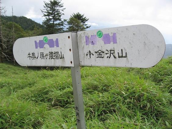 牛奥の雁ヶ腹摺山の道標