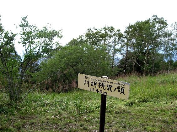 川胡桃沢ノ頭
