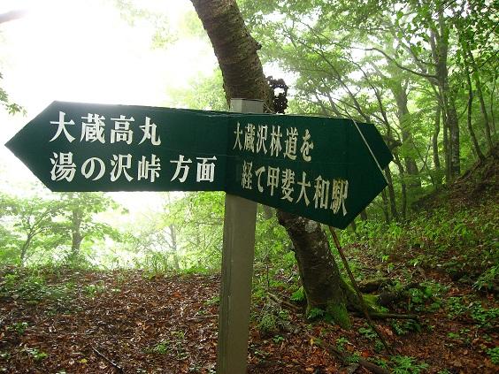 大蔵高丸・甲斐大和駅への分岐