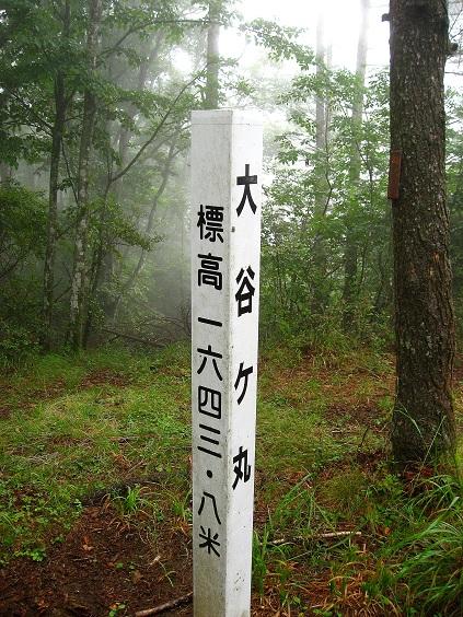 大谷ヶ丸山頂の道標