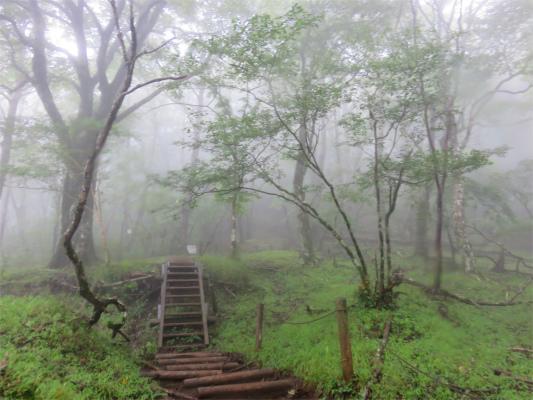 鍋割山荘道