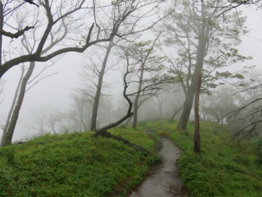 登山ブログスタートの日イメージ