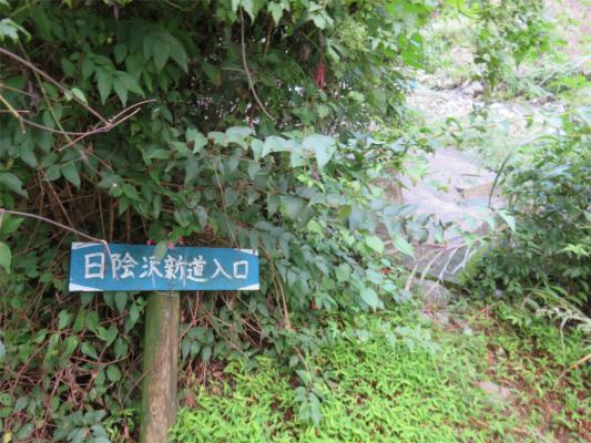 日陰沢新道の入口