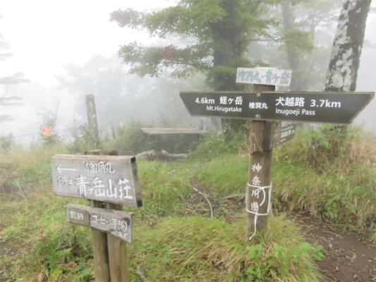 檜洞丸から青ヶ岳山荘