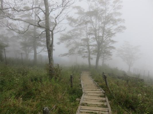 青ヶ岳山荘に向かう途中の様子