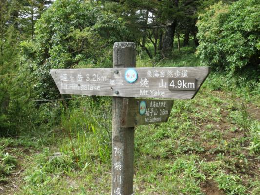 姫次から袖平山と風巻ノ頭登山道