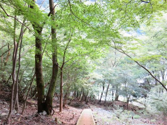 急斜面登山道