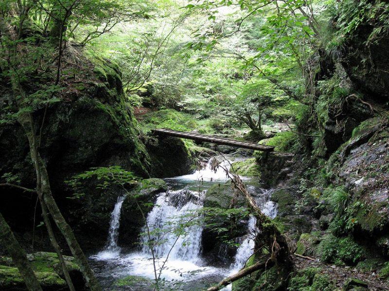 百尋ノ滝まで癒しの渓谷歩き