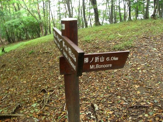 蕎麦粒山・棒ノ折山(棒ノ嶺)の分岐