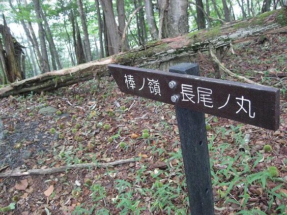 棒ノ嶺・高水三山を目指す分岐