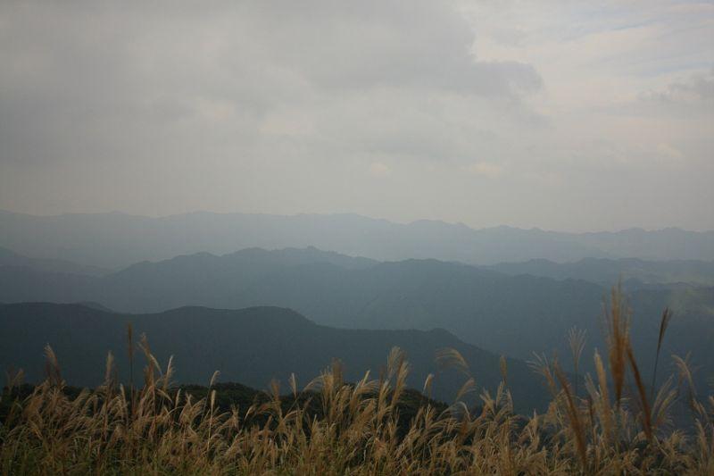 棒ノ嶺山頂奥武蔵の景色