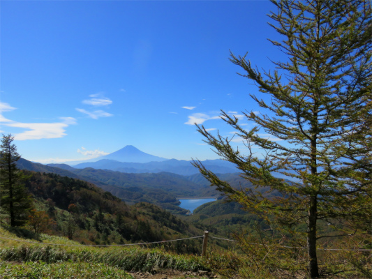 富士山大きい