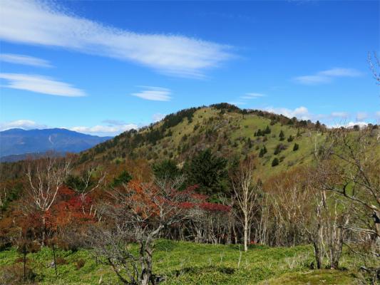 大菩薩嶺の山頂