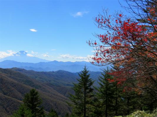 富士山の景色雄大