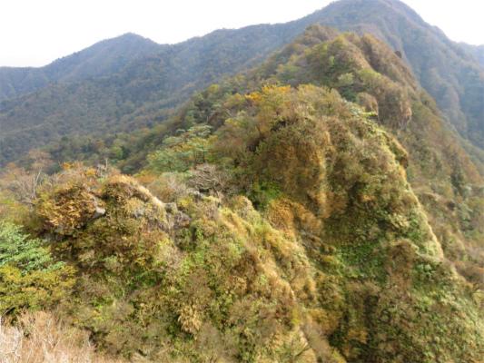 鋸岳のアップ