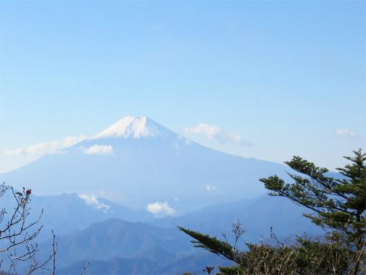 三頭山の頂上からの富士山