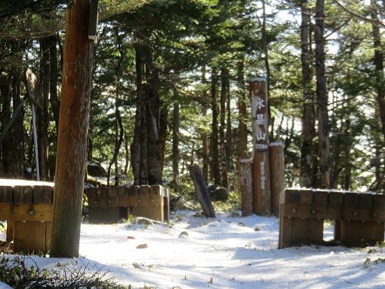 水晶山樹林帯