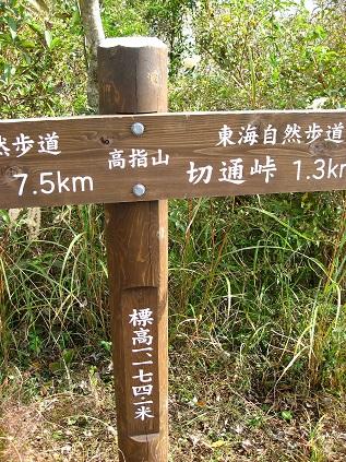 高指山の標高は、1,174m