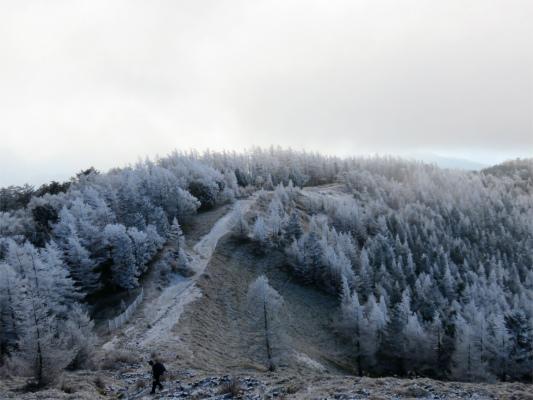 石尾根霧氷の世界