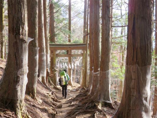 鳥居左手にいくと霧藻ヶ峰・右手に行くと三峯神社方面
