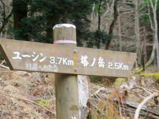 尊仏ノ土平から尊仏山荘への登山口
