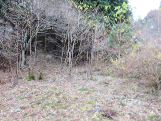 鍋割山北尾根の取り付き地点